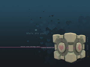 weighted-companion-cube-1400_1050.jpg