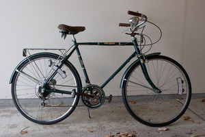 Free Spirit (Sears 10-Speed 26-In. Lightweight Bicycle)