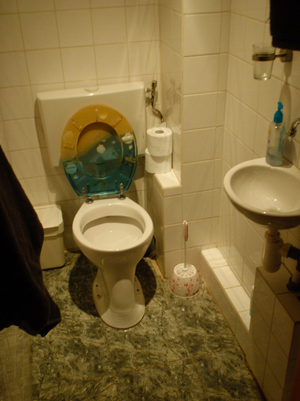 German-style Toilet (with Shelf!) In The Bathroom, And The